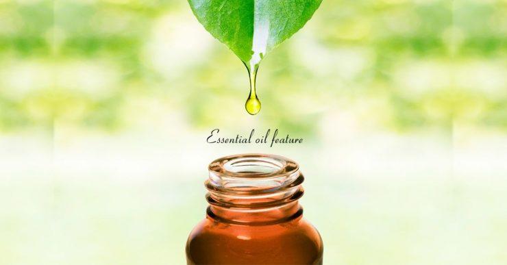 精華油使用的 (2)