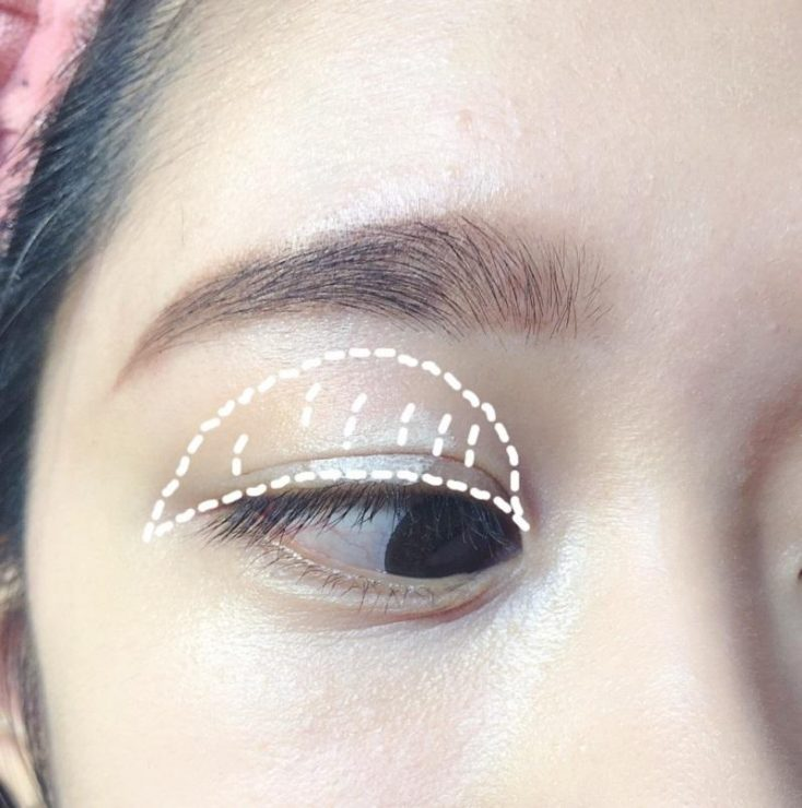 化妝 新手 教學 妝容 眼妝 眼影 打底  範圍